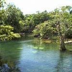 Les Cénotes Blog Yucatan