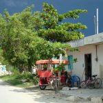 Celestún Blog Yucatan Solidaire