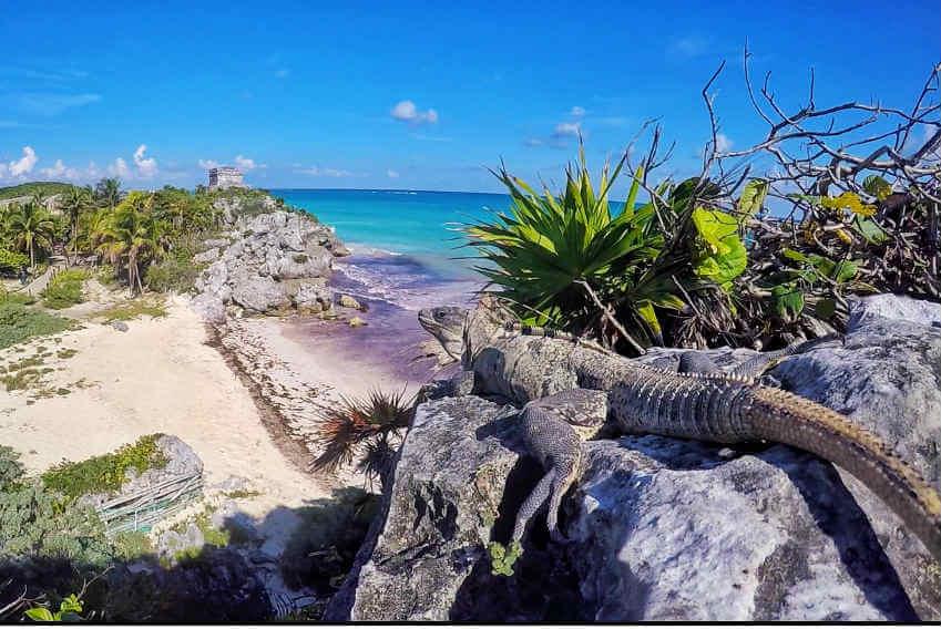 Séjour Yucatan Quintana Roo Blog YucatanSolidaire